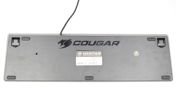 Cougar-Vantar-pic8