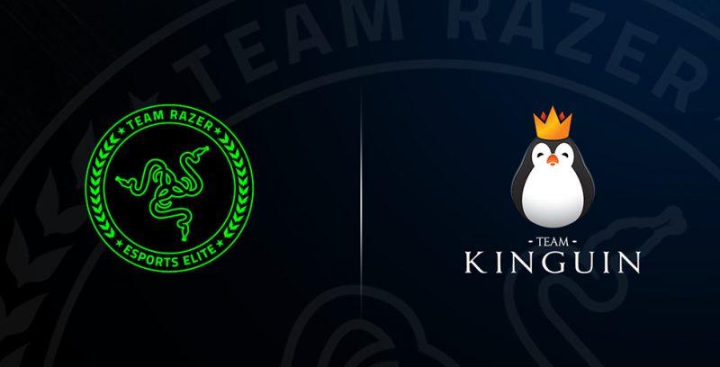 team kinguin razer