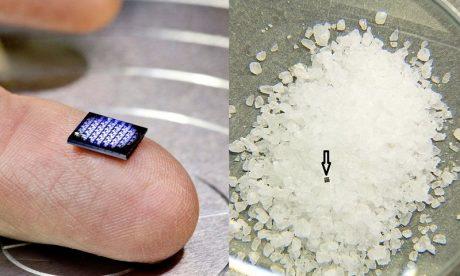 Najmniejszy komputer świata od IBM – mniejszy od ziarna soli!